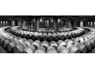 Nové prémiové víno od Catena Zapata