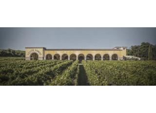 Zľava 15% na Amarone Della Valpolicella DOCG Monte Tondo